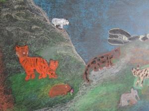 Grade 4 Animal Project Drawings